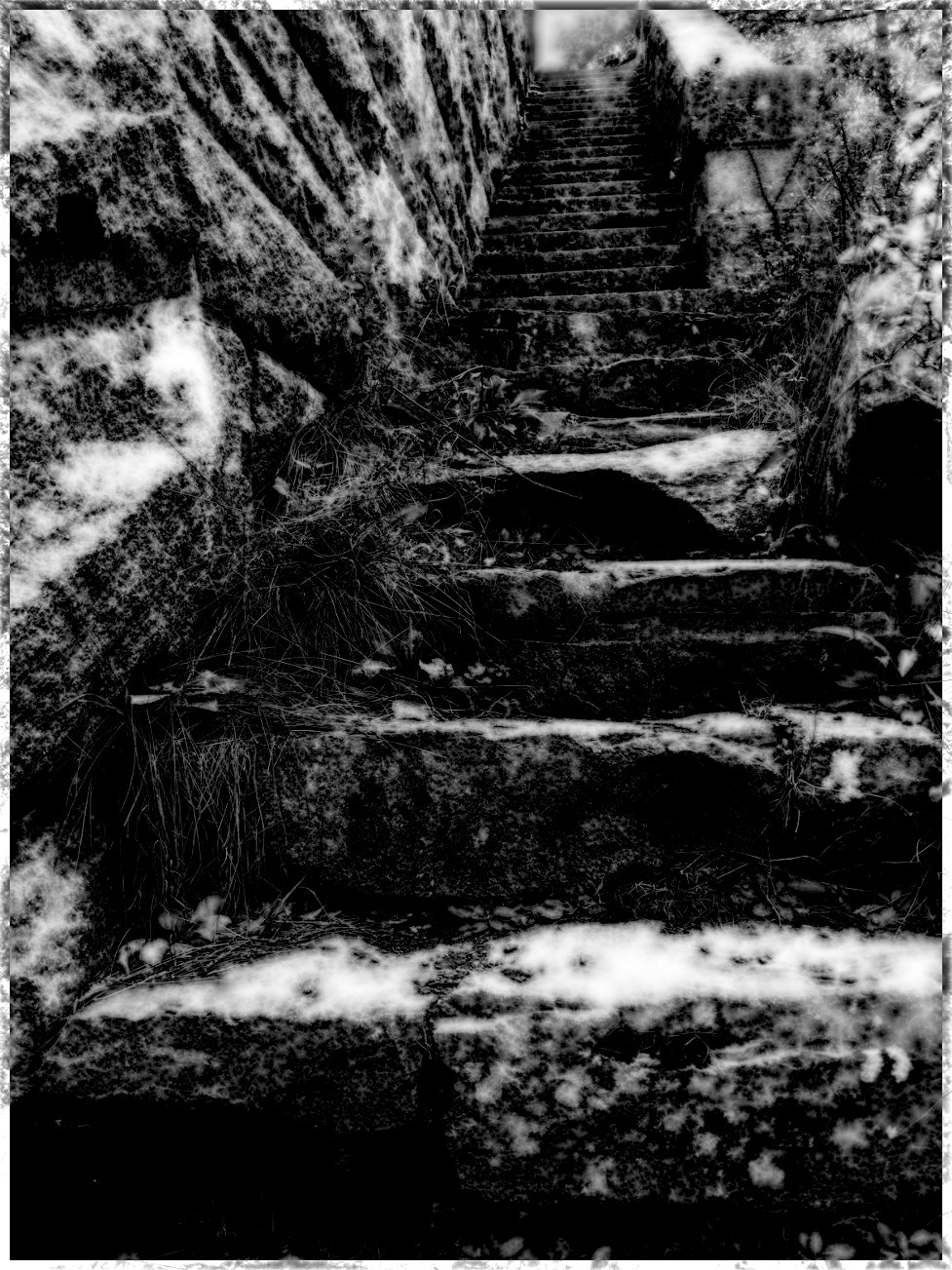 The Stairs, by Mat Tarbox